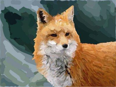 Wall mural fox nature