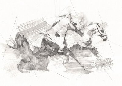 Wall mural freehand horse head pencil drawing