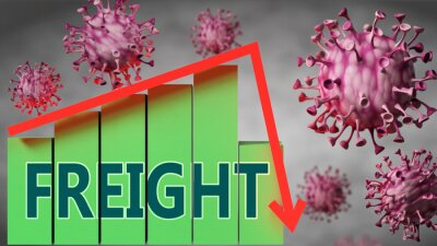 Wall mural Freight and Covid-19 virus, symbolized by viruses and a price chart falling down with word Freight to picture relation between the virus and Freight, 3d illustration