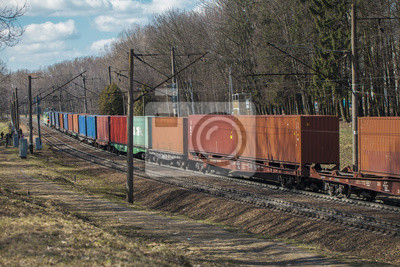 Wall mural freight wagons on the railroad. freight train