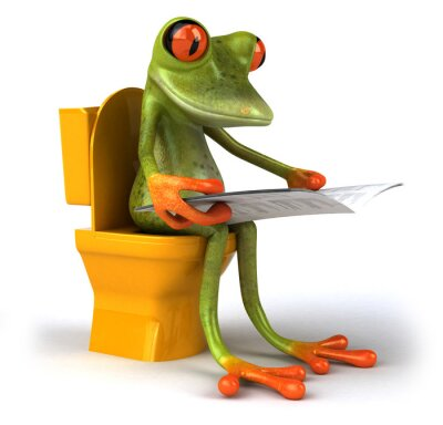 Frog and wc