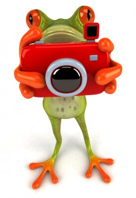 Wall mural Frog with a camera