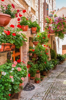Wall mural Full of flower porch in small town in Italy, Umbria