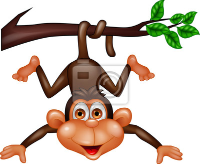 Wall mural Funny monkey hanging on tree branch