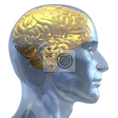 Golden Brain
