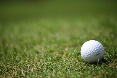 Wall mural Golf ball in grass