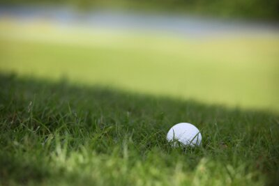 Wall mural Golf ball on course