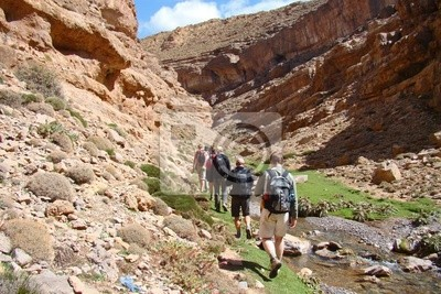 Gorge Wandras, in the High Atlas ( Morocco )
