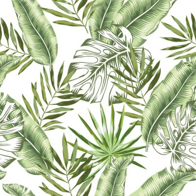 Wall mural Green banana, monstera palm leaves with white background. Vector seamless pattern. Tropical jungle foliage illustration. Exotic plants greenery. Summer beach floral design. Paradise nature.