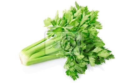 Wall mural Green celery