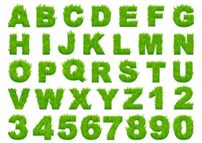 Wall mural Green grass alphabet with letters and numbers