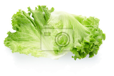Wall mural Green salad leaves on white, clipping path included