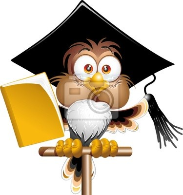 Gufo Professore Cartoon-Owl Teacher Cartoon-Vector