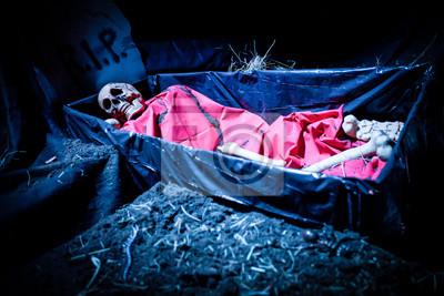 halloween decoration doll skeleton in a funeral casket