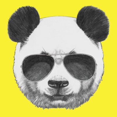 Wall mural Hand drawn portrait of Panda with sunglasses. Vector isolated elements.