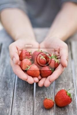 Hands holding freshly picked strawberries