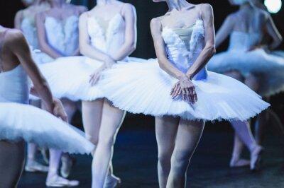 Wall mural Hands of ballerinas. Hands of ballerinas. Ballet statement. Great ballerinas. Ballerinas in the movement.