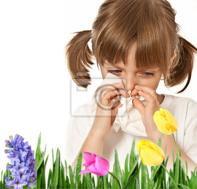 hay fever - allergic child