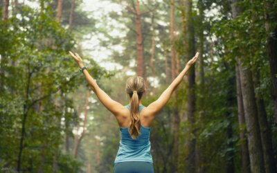 Wall mural healthy lifestyle fitness sporty woman early in forest area