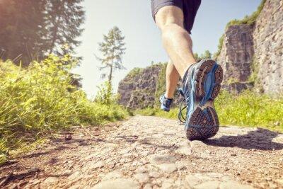 Wall mural Healthy trail run