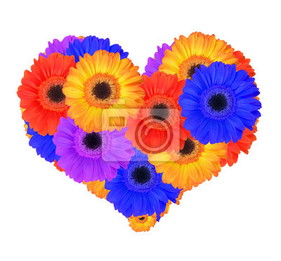 Heart from gerbera flowers isolated