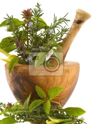Wall mural Herbs