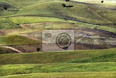 Wall mural hills 2