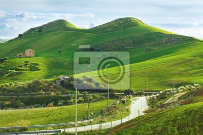 Wall mural hills