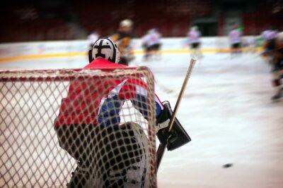 Wall mural Hockey goalie