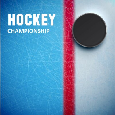 Wall mural Hockey puck isolated on ice top view