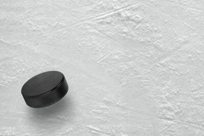 Wall mural Hockey puck on ice