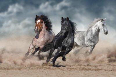 Horse herd  galloping on sandy dust against sky