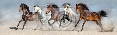 Wall mural Horses run fast in sand against dramatic sky