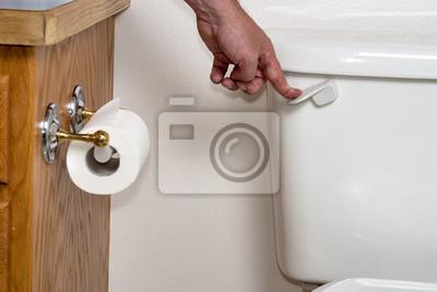 Wall mural Human Hand flushing a toilet