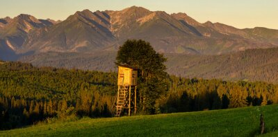 hunting tower against the backdrop of the Panorama of the Tatra Mountains in Poland in the beautiful light of the rising sun