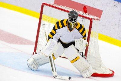 Wall mural Ice Hockey Goalie