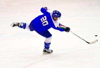 Wall mural ice hockey player