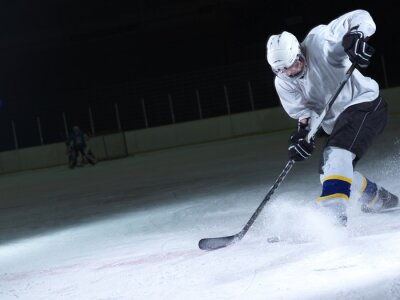 Wall mural ice hockey player in action