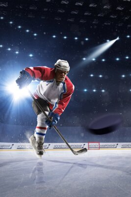 Wall mural Ice hockey player on the ice arena