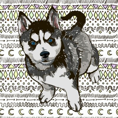 Wall mural Illustration of the dog breed Husky