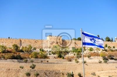 Wall mural Israel Flag