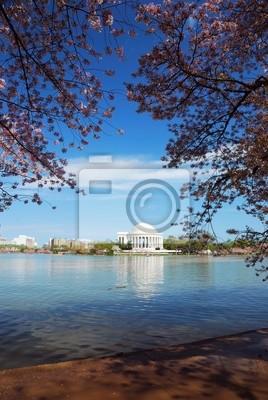 Jefferson national memorial lake view, Washington DC