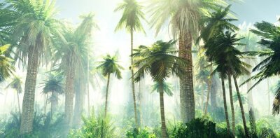 Wall mural Jungle in the fog, palm trees in the morning in the haze, rays of light in the palm trees, 3D rendering