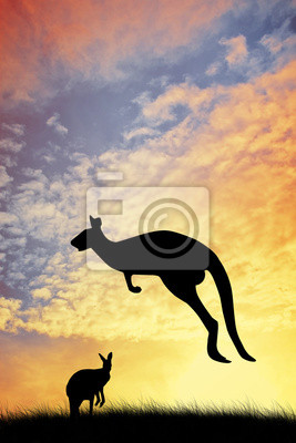 Kangaroos in Australian landscape