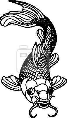 Wall mural Koi carp black and white fish