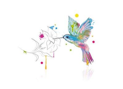 Wall mural Kolibri trinkt Nektar aus einer Blüte