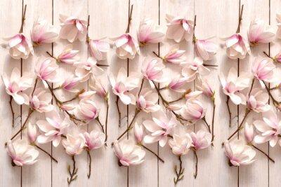 Wall mural kwiat magnolii, kwiat, roślina, biała, beuty, galąź, drzewo magnolii, kwiatowy, fiolet, kwitnienie, flora, botanika, ornament z magnolii, kompozycja magnolii, układ kwiatów magnolii, pąki magnolii, fl