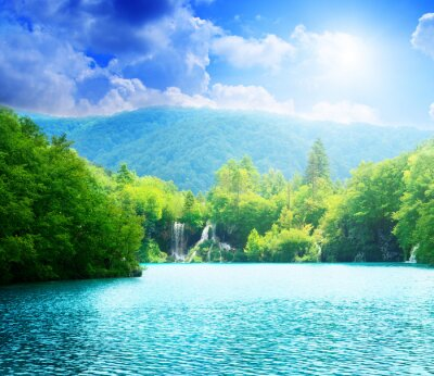 Wall mural lake in deep forest