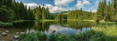 Wall mural lake in the forest in lower tatra mountains