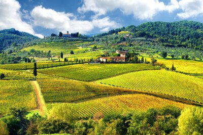 Wall mural Landscape in Chianti region, Tuscany, Italy